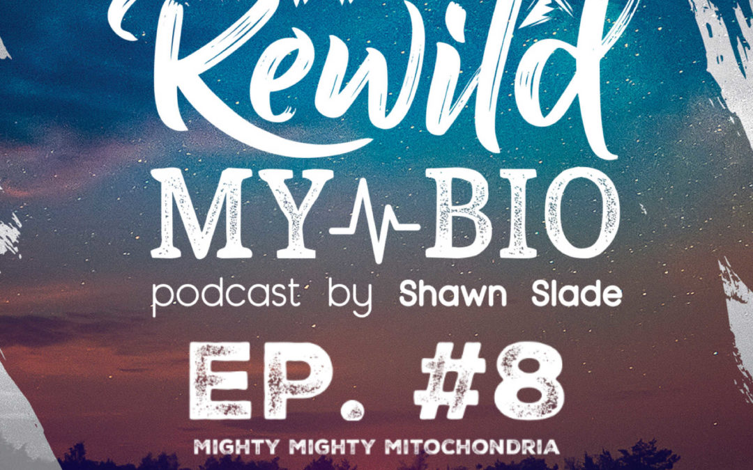 Ep. 8 Mighty Mighty Mitochondria w/ Richard Vuksinic ND