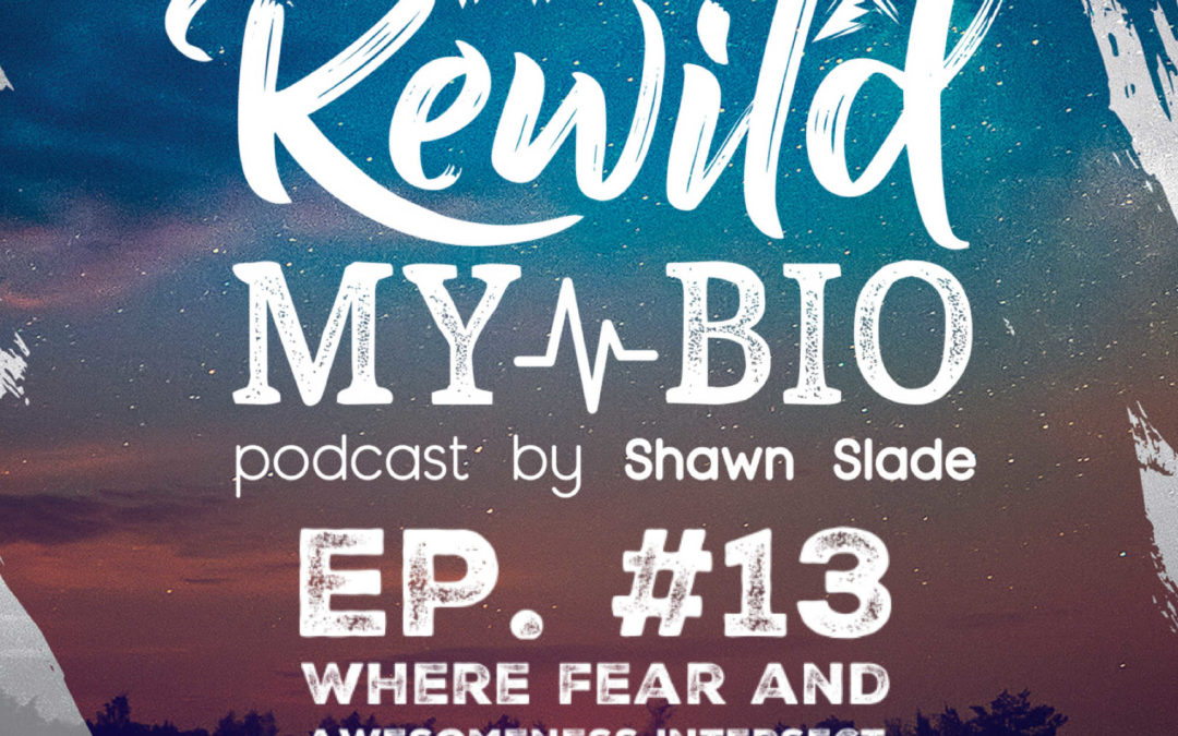 Ep. 13 Where Fear and Awesomeness Intersect w/ Dr. Kresimir Jug