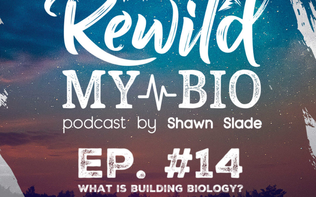 Ep. 14 What is Building Biology? w/ Stephen Collette and Co-host Dr. Richard Vuksinic