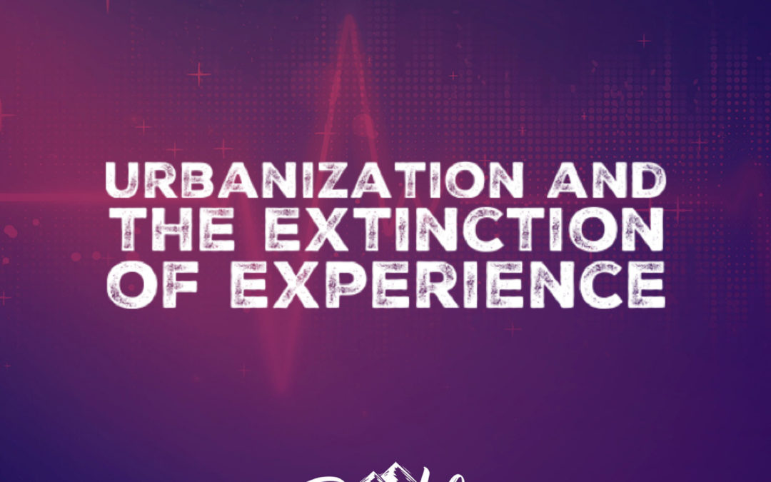 Urbanization and the Extinction of Experience