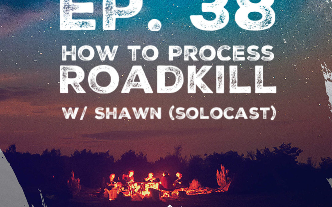 Ep. 38 w/ Shawn (Solocast) – How to Process Roadkill